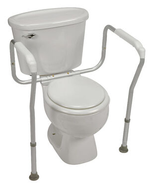 Healthsmart® Germ-Free Toilet Rails Safety Arms