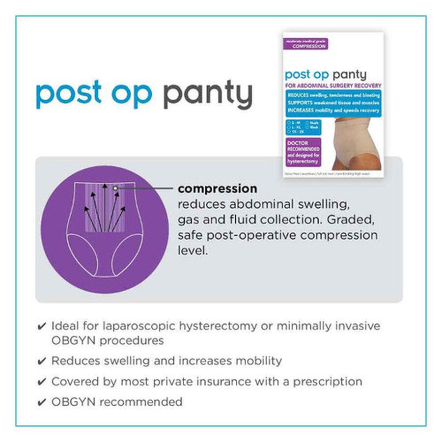 UpSpring Post Op Panty High Waist Compression, Nude, , large image number 2
